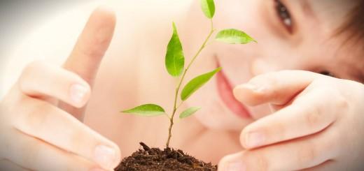 Curso de educação ambiental