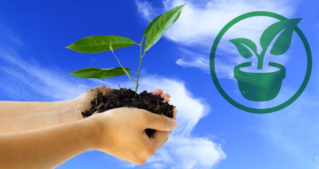 plástico biodegradável e sua compostagem