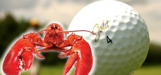 reciclagem das bolas de golfe