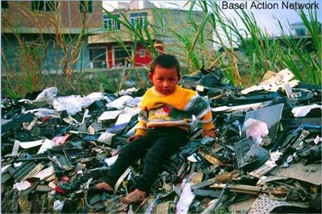 o perigo do lixo para a saúde