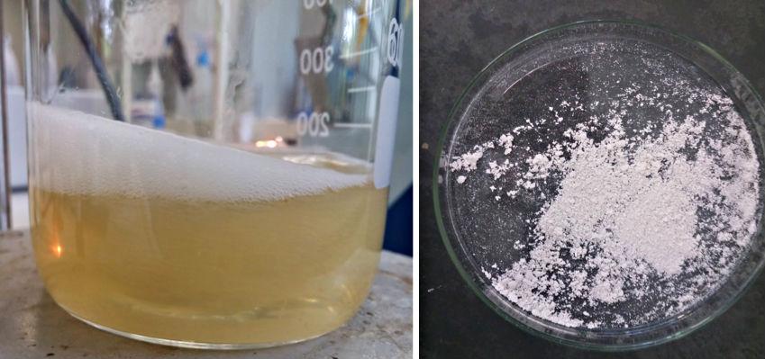 Sabão líquido feito a partir do chiclete mascado. Ao lado carbonato de cálcio, também extraído de um chiclete mascado